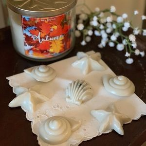 Bath and Body Works Autumn 6 Wax Melts